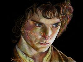 Elijah Wood as Frodo by Shishkina