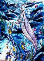 Beautiful dream with whale by elicenia