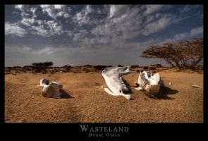 Wasteland by Lightmotiv