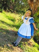 Alice 2 by hanyaanfaery