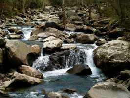 Porter Creek by alimuse
