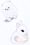 Furballs - Mechanical Pencil and Color by Moonbei