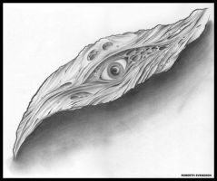 the wooden eye by wargland