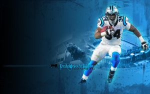 Carolina Panthers Wallpaper by CardiacCat