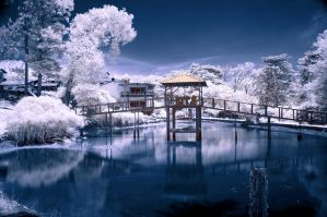 Laguna de Plata Infrared 005 by otas32