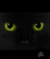 Cat eyes (Day 233) by Hedwigs-art