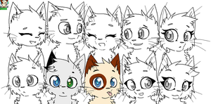 My group of Warrior Cat's OC's WIP by InvaderMas