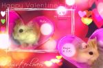 Happy Hamster Valentines by hedspace77