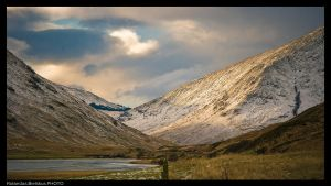 spring in scotland by ronald007