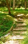 Steps to the Shire by ElephantAndSpyroFan