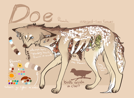 Doe by FaIIyn