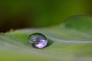 Droplet 70 by josgoh