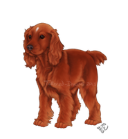 Spaniel Design by Tattered-Dreams