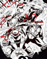 TMNT for Heroes-Con Auction by Shono