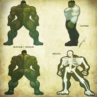 Anatomy - HULK by Juggertha
