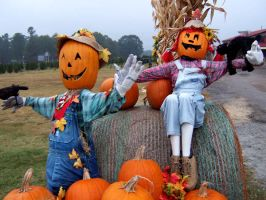 Scarecrow Couple by djPhotos