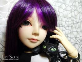 Maiko and Toothless 2015 (2) by LilySkadi