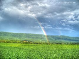 Crops At The End Of The Rainbow by jim88bro