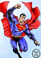 Superman Collab - 2005 by Killerbee-Kreations