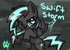 Swift Storm by Catlover264