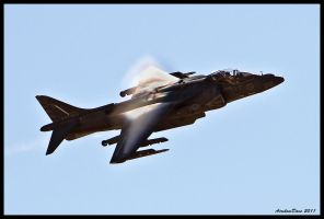 MAGTF Harrier 1 by AirshowDave