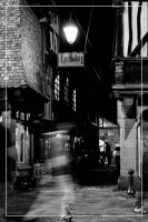Dinan 03 by 0-Photocyte