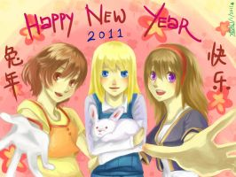 Happy New Year 2011 by christon-clivef
