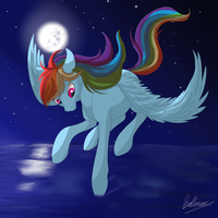 Rainbow Dash - Night flight by Balleman