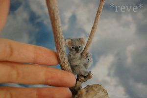 Miniature Baby Koala Bear * Handmade Sculpture * by ReveMiniatures