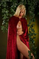 Little Red Riding Hood Redux3 by alchemiststeve