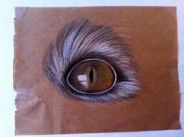 Graypaper eye by CecilieAusland