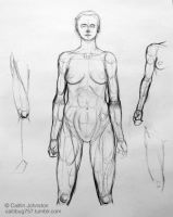 Anatomical position study- F by DrummerGirl375