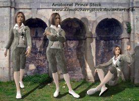 Aristocrat Prince Stock Pack by DemoncherryStock