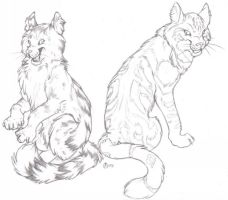 Graystripe And Fireheart by ShiftingStarlight