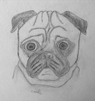 Pug by Papelex