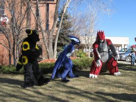 Umbreon, Shadow Lugia, and Groudon 4 by Leap207