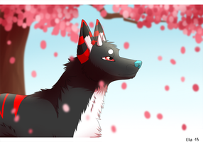 cherry blossoms by Pyttinski