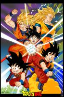 Dragon Ball by Protocadus