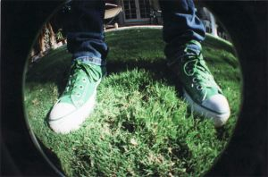Fisheye: Green by bluepygmypuff