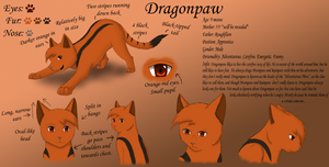 Dragonpaw Reference by MiaMaha