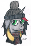 Ready for Winter (Update) by Mane-Shaker