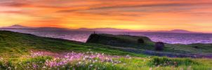 Grassy Shore Panorama by kory83