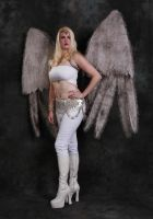 angel1 by ladydchaos