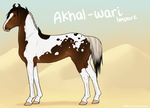 Akhal-Wari Import 084 by horsy1050