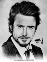 Robert Downey Jr. By Drade Art (2013) by DradeArt