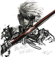 raiden by CosTA-S