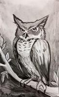 Ink Practice - Owl by OtakuEC