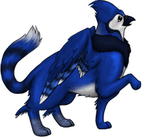 Gryphion New Breed - Male Blue Jay mimic by Neocridders