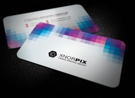 Fine Business Card by xnOrpix