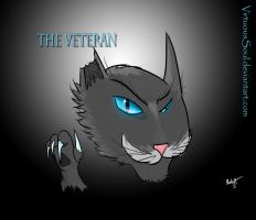 The Veteran by VirtuousSoul